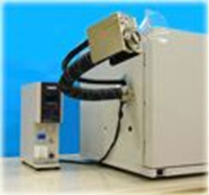 gas chromatography and olfactometry electronic nose analysis General description this reference provides the advances in mass spectrometry, sample preparation, gas chromatography (gc)-olfactometry, and electronic-nose technology for food, cosmetic, and pharmaceutical applications.